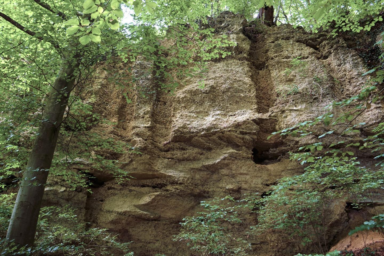 geologische-orgeln-unterneukirchen